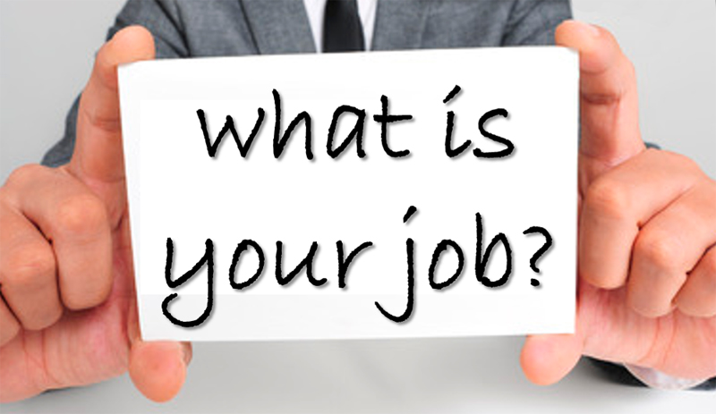 What is your job?